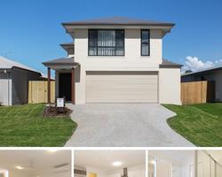 OJ Pippin have done a magic job.